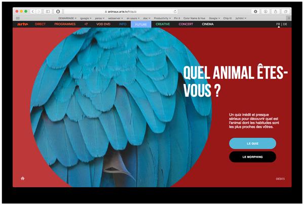 animaux_1